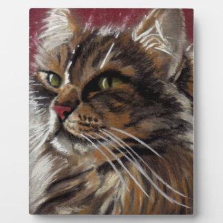 Beautiful Dreamer - Maine Coon Cat Plaque