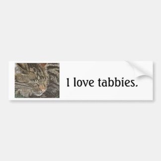 Beautiful Dreamer (sleeping tabby) Bumper Sticker