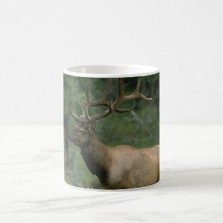 Beautiful Elk Coffee Mugs