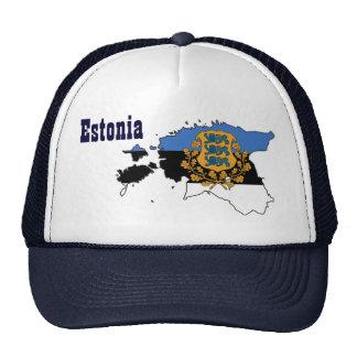 Beautiful Estonia Hat! Cap