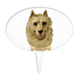 Beautiful Face portrait of a Pomeranian dog Cake Toppers