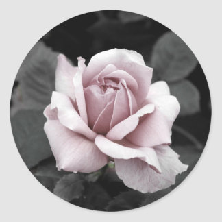 Beautiful faded pink rose print round sticker