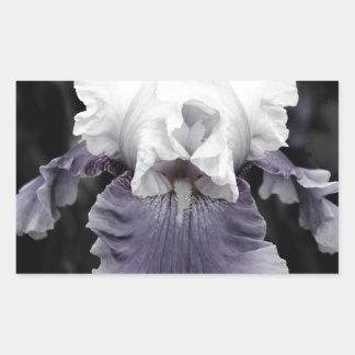 Beautiful faded purple iris print rectangular stickers