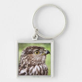 Beautiful falcon portrait Silver-Colored square key ring