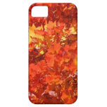 Beautiful Fall Leaves iPhone cases gifts Thanks