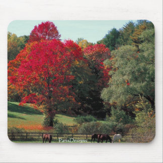 Beautiful Fall scene Mouse Pad