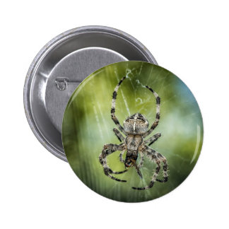Beautiful Falling Spider on Web 6 Cm Round Badge