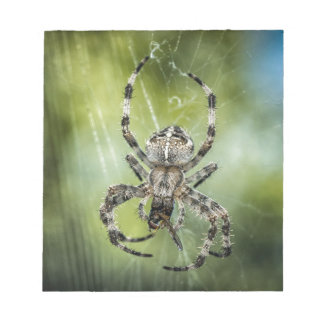 Beautiful Falling Spider on Web Notepad