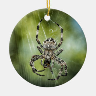 Beautiful Falling Spider on Web Round Ceramic Decoration