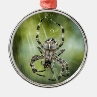 Beautiful Falling Spider on Web Silver-Colored Round Decoration