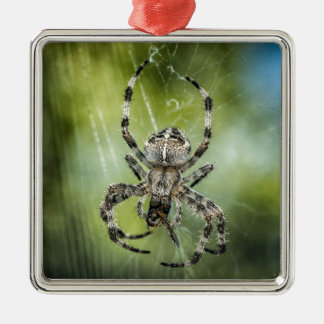 Beautiful Falling Spider on Web Silver-Colored Square Decoration