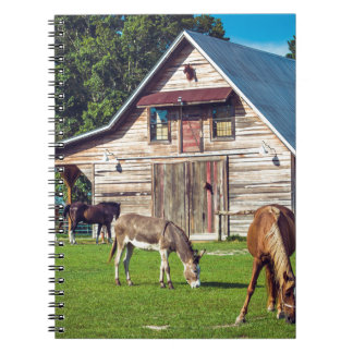 Beautiful Farm Scene with Horses and Barn Notebook