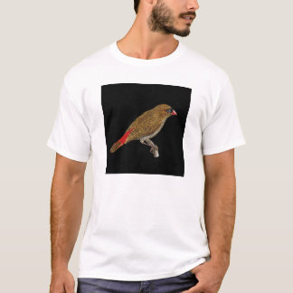 Beautiful Firetail Finch - Stagonopleura  T-Shirt