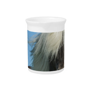 BEAUTIFUL FJORD PONY HORSE STALLION BEVERAGE PITCHERS