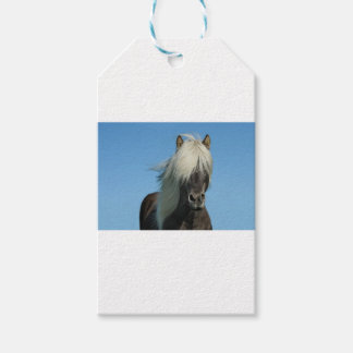 BEAUTIFUL FJORD PONY HORSE STALLION GIFT TAGS