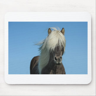 BEAUTIFUL FJORD PONY HORSE STALLION MOUSE PAD