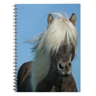 BEAUTIFUL FJORD PONY HORSE STALLION NOTEBOOK