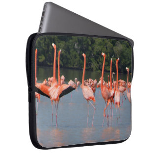 Beautiful Flamingoes Laptop Sleeve