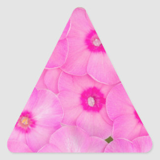 beautiful floral decoration triangle sticker