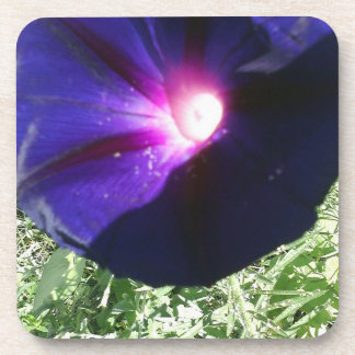 Beautiful Floral Drink Coaster