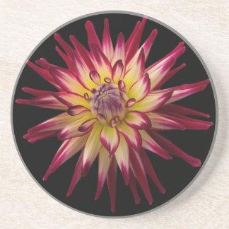 Beautiful Flower Karras Coaster