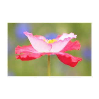 Beautiful flower photo canvas print