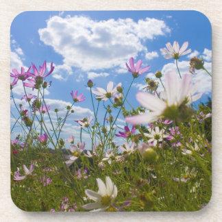 beautiful flowers Cork Coaster