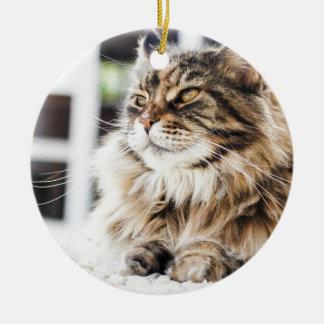 Beautiful fluffy tabby Siberian Persian cat design Ceramic Ornament