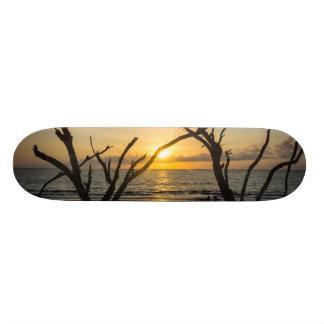 Beautiful Folly Morning 20.6 Cm Skateboard Deck