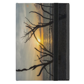 Beautiful Folly Morning Cover For iPad Mini