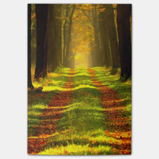 Beautiful Forest Path Road Post-it Notes