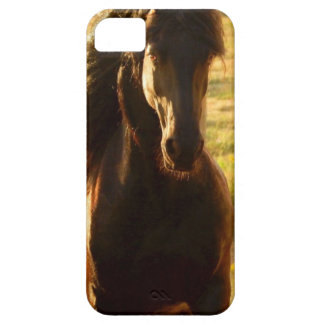 BEAUTIFUL FRIESIAN HORSE STALLION CASE FOR THE iPhone 5