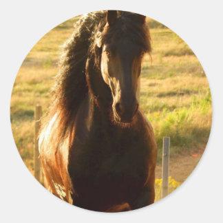 BEAUTIFUL FRIESIAN HORSE STALLION CLASSIC ROUND STICKER