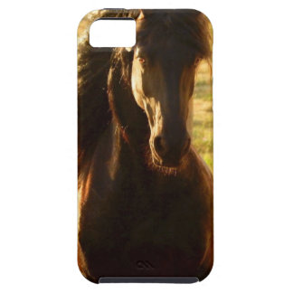 BEAUTIFUL FRIESIAN HORSE STALLION iPhone 5 COVER