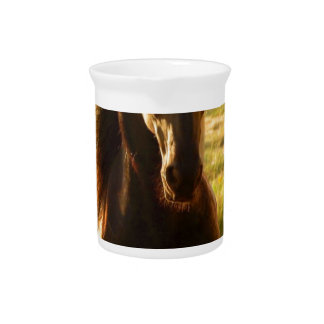 BEAUTIFUL FRIESIAN HORSE STALLION PITCHER