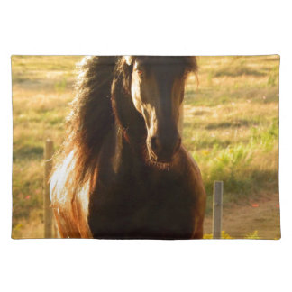 BEAUTIFUL FRIESIAN HORSE STALLION PLACEMAT