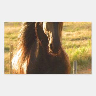 BEAUTIFUL FRIESIAN HORSE STALLION RECTANGULAR STICKER