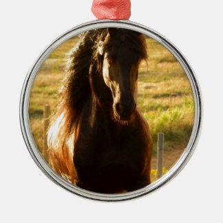 BEAUTIFUL FRIESIAN HORSE STALLION Silver-Colored ROUND DECORATION