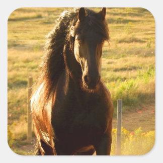 BEAUTIFUL FRIESIAN HORSE STALLION SQUARE STICKER