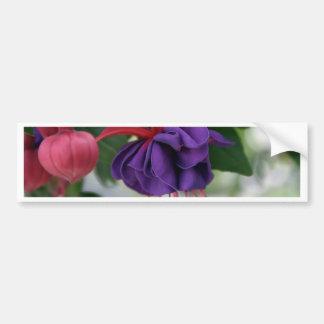 Beautiful Fuchsia Bumper Sticker