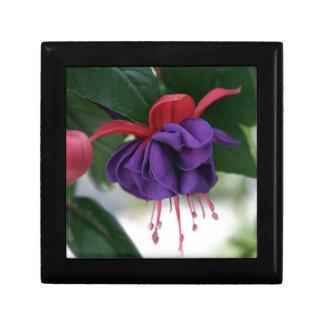 Beautiful Fuchsia Gift Box