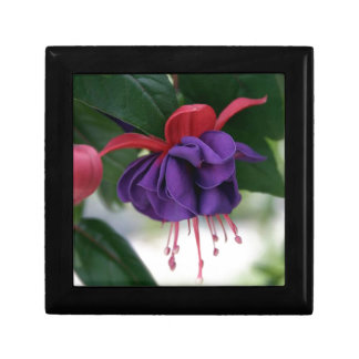 Beautiful Fuchsia Small Square Gift Box