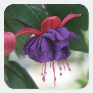Beautiful Fuchsia Square Sticker
