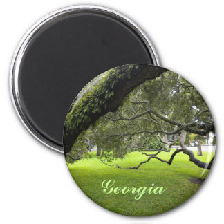 Beautiful Georgia Oak and Green Lawn Magnet