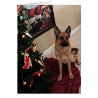 Beautiful German Shepherd Christmas Card