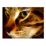 Beautiful Ghostly Fire Cat Postcards