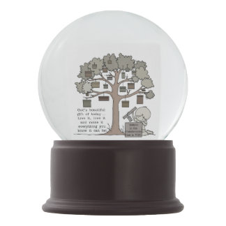 Beautiful Gift Snow Globe