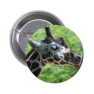 Beautiful Giraffe 6 Cm Round Badge