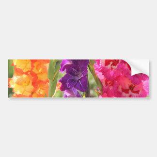 Beautiful Gladiolus Blooms Bumper Sticker