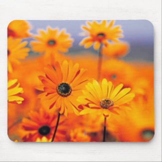 Beautiful Golden Sunny Sunflowers Mousepad